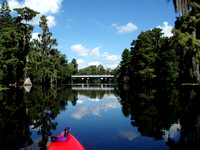 HILLSBOROUGH RIVER - Harney Rd., Tampa, Fla.