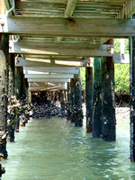 ...and have long since loved snapping the geometry under piers.